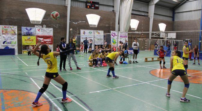 El XXXVIº Torneo de voleibol Fuentes de Andalucía obtiene una alta participación