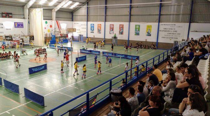 40 equipos representando a Andalucía y Extremadura disfrutaron del XXXVIIº Torneo de Voleibol Fuentes de Andalucía el decano de Sevilla (incluye imágenes y acceso a reportaje audiovisual)