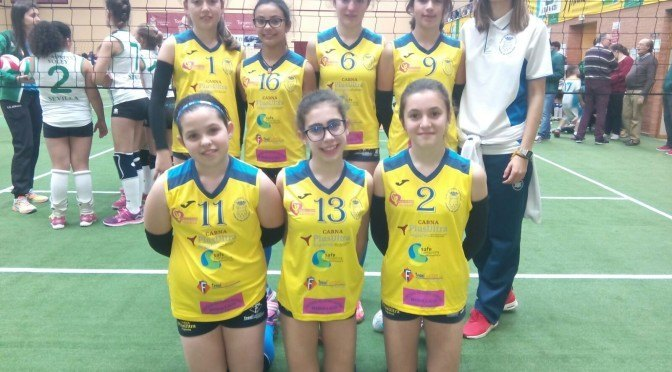 Nuestras chicas alevines de voleibol alcanzan el puesto 11º de Andalucía