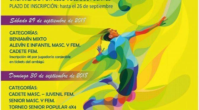 IIIº 'Torneo de Pretemporada' de voleibol, próximo 29 y 30 de septiembre