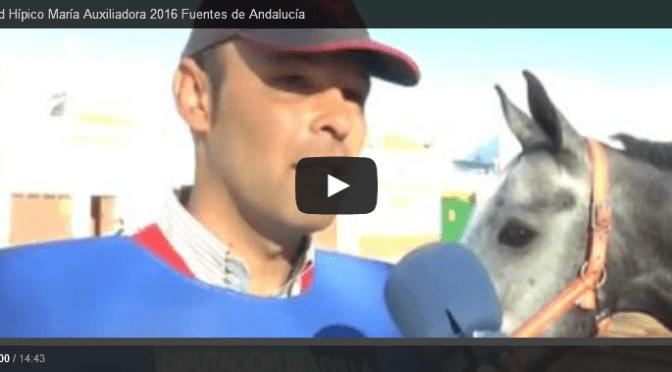 (vídeo) Reportaje IIº  Raid Hípico María Auxiliadora 2016 Fuentes de Andalucía